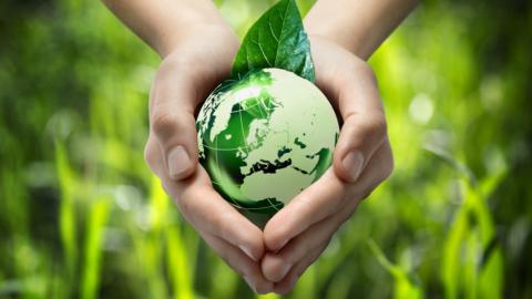 Ympäristöteot